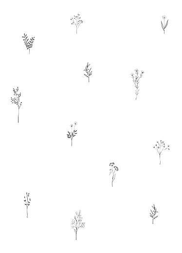 Livret de messe Herbier vert - Page 3