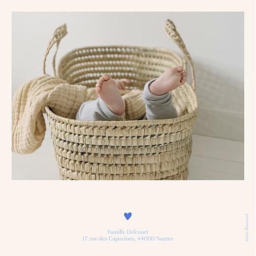 Faire-part de naissance Jardin de flœurs bleu - Page 4