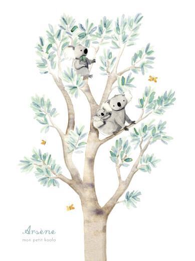 Affiche Koalas en famille blanc - Page 1