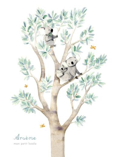 Affichette Koalas en famille blanc - Page 1