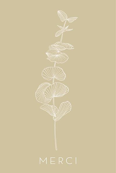 Carte de remerciement Envolée d'eucalyptus beige finition