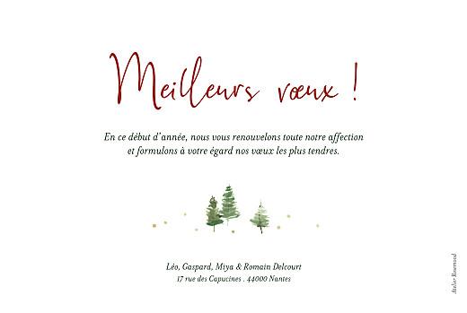Carte de voeux Sapins blanc - Page 2