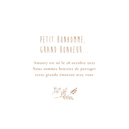 Faire-part de naissance Ronde des prés (dorure) terracotta - Page 3