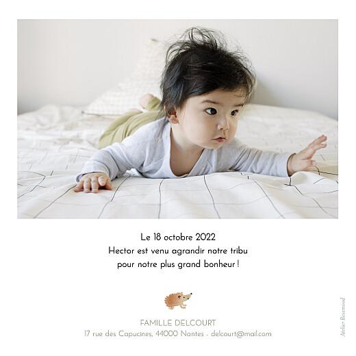 Faire-part de naissance Sous-bois blanc - Page 2