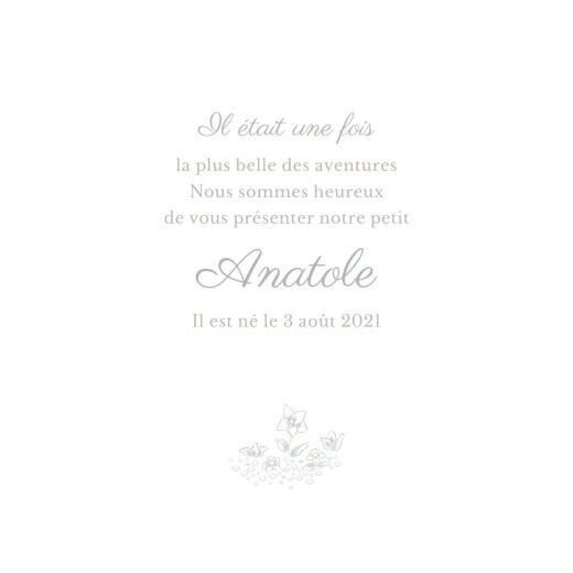 Faire-part de naissance Histoire du soir vert - Page 3