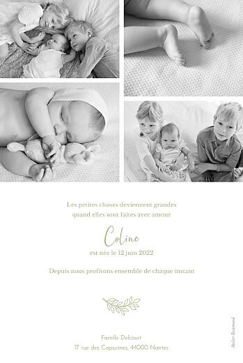 Faire-part de naissance Arbre généalogique (portrait) vert - Page 2