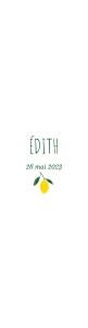 Faire-part de naissance Agrumes crayonnées (marque-page) bis citron