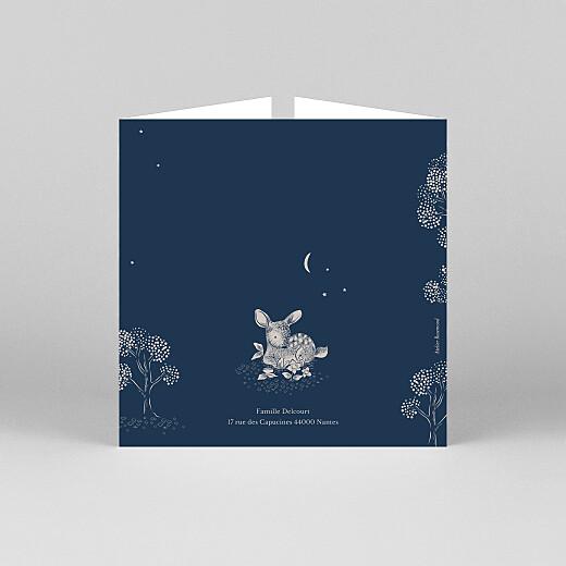 Faire-part de naissance Histoire du soir (fenêtre) bleu - Vue 3