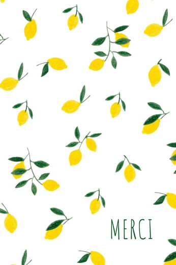 Carte de remerciement Agrumes crayonnés citrons