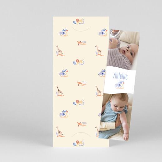 Faire-part de naissance Douce savane (marque-page) beige - Vue 1