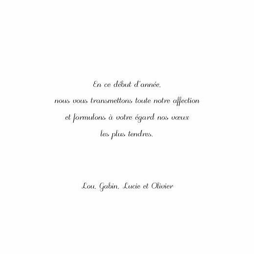 Carte de voeux Brins d'hiver (4 pages) bleu - Page 3